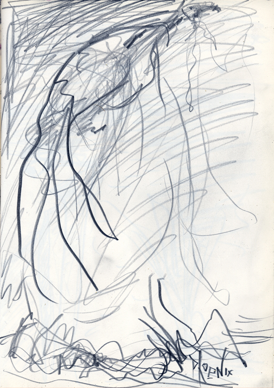 pencil drawing from Jonathan Herbert sketchbook of Phoenix Rising from Embers